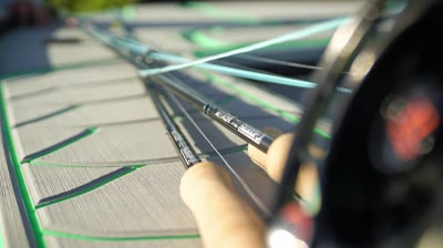 Whatever the target species, these rods feel good in the fly shop when you're giving them a test drive.