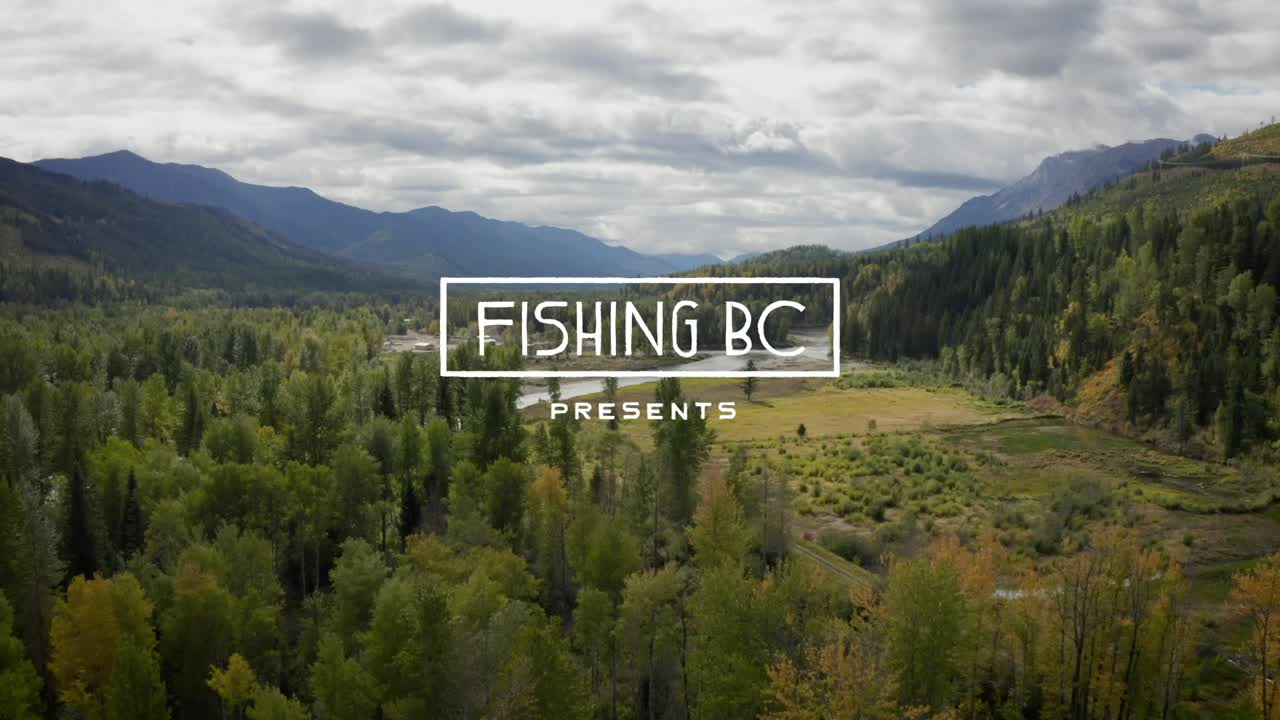 Hilary Hutcheson fishing for bull trout in the Elk River of B.C.