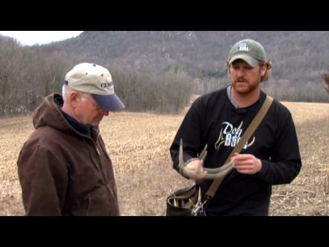 Gun Dog: Shed Antler Training 15