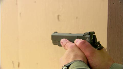 Rock Island  22 TCM Pistol & Armscor  22 TCM Ammo - Guns and